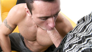 Muscular stud gives hung casting agent blowjob of his life