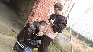 Tattooed stud enjoys being sucked off by his lover outdoors