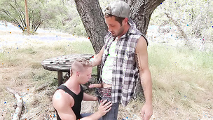 Youthful gay lovers enjoy giving each other a nice blowjob